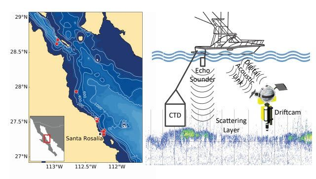 A map of the Gulf of California with Driftcam deployments, right. System diagram with echosounder, boat, and Driftcam, left.