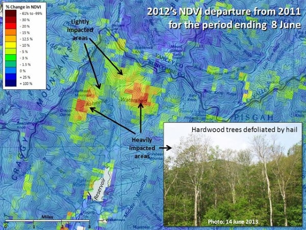 U.S. Forest Change Assessment Viewer map showing damage to the Asheville, North Carolina watershed following a 2012 hail storm.