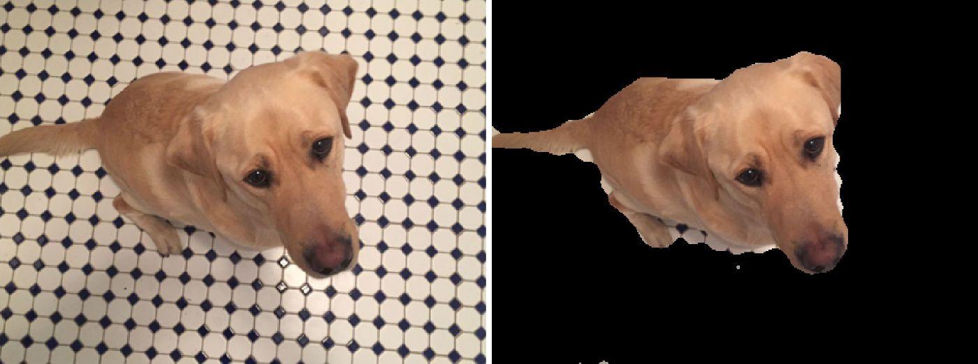 セグメンテーション(テクスチャ情報を使って犬の領域を抽出)