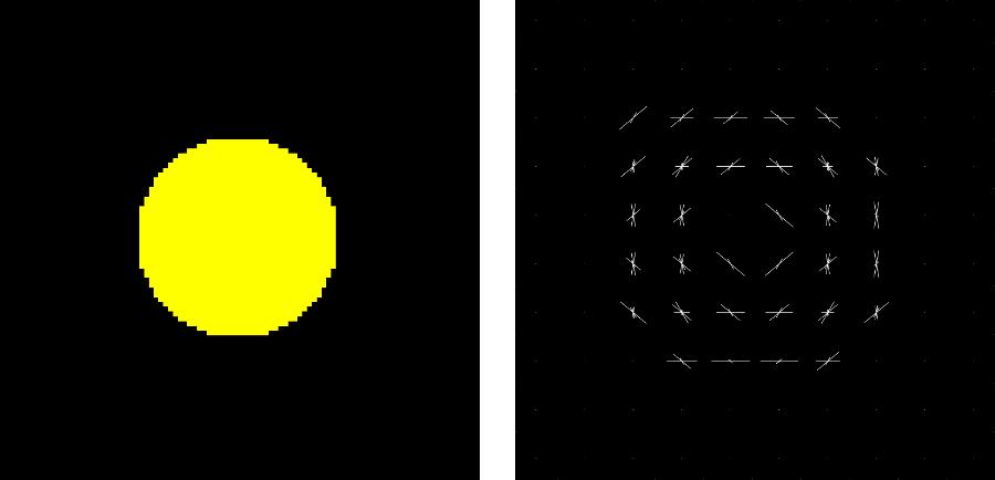 円形の物体に対してHoG特徴量を抽出