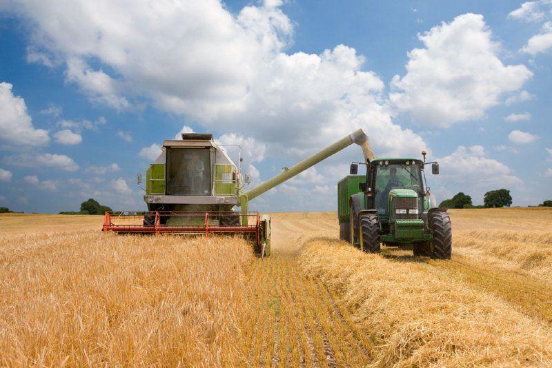 ローカル5Gの活用:刈り取った作物を正確に収容することで生産性向上