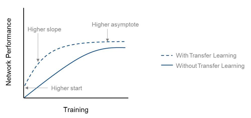 ゼロからの学習と転移学習のネットワーク性能 (精度) の比較。