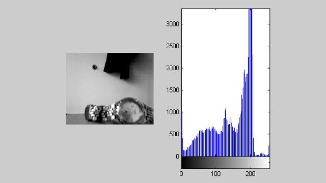 Image Processing Toolbox とともに使用して、ライブヒストグラムを含むビデオフィードを表示する Image Acquisition Toolbox。