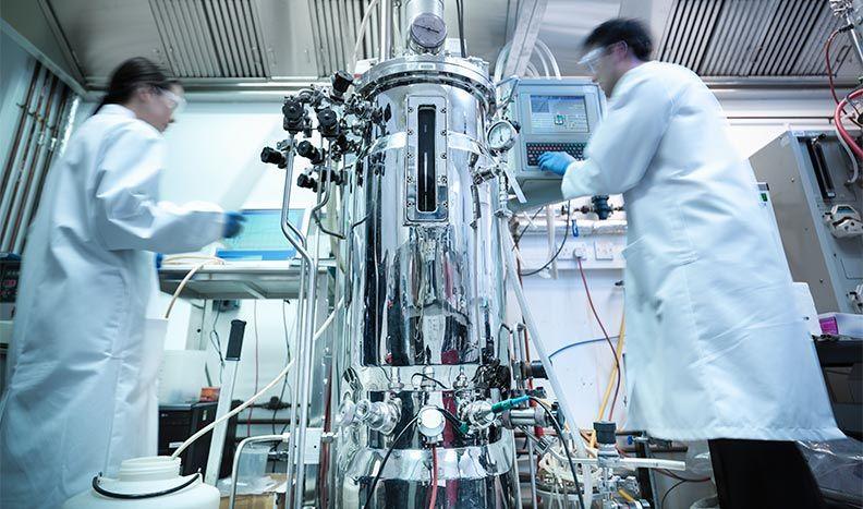 医薬品製造
