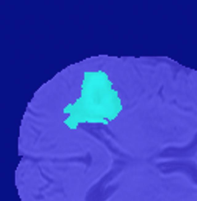 3D データ